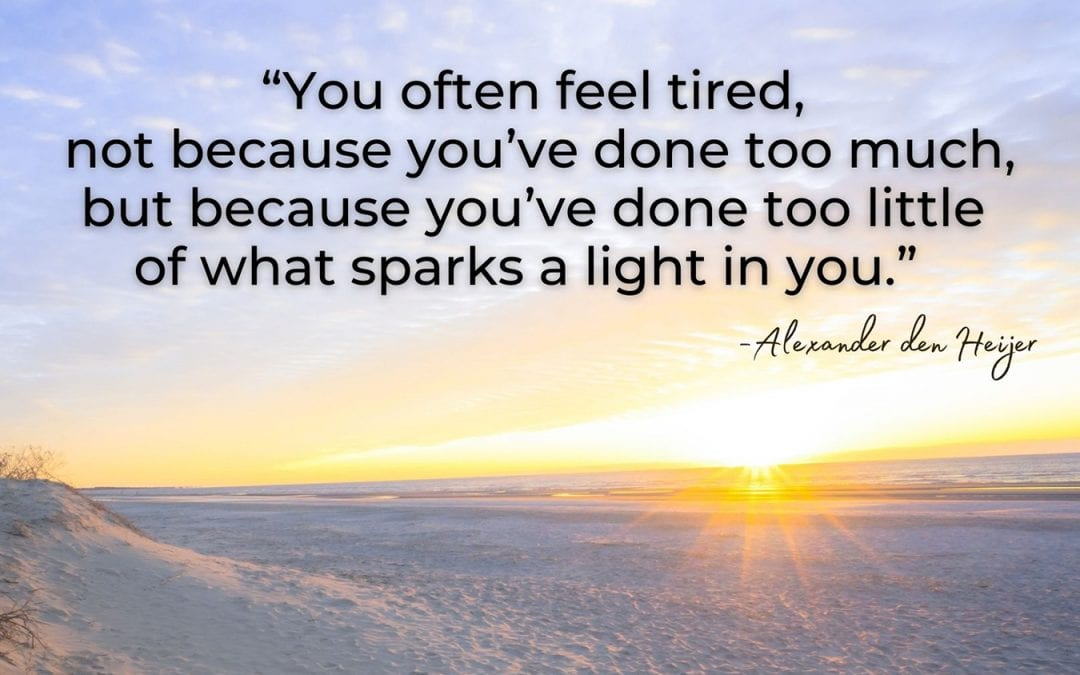 quote sparks a light Alexander den Heijer inspiration inspirational coach leadership omaha