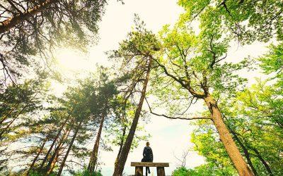 Skeptics Can Meditate Too
